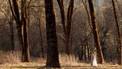 Bride and groom in El Capitan Meadow
