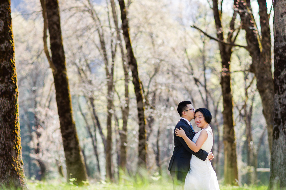 Preview from Intimate Yosemite Wedding