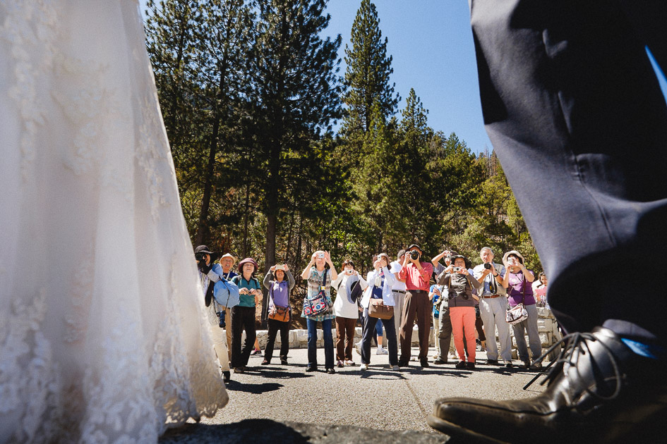 Yosemite Weddings for Tourists