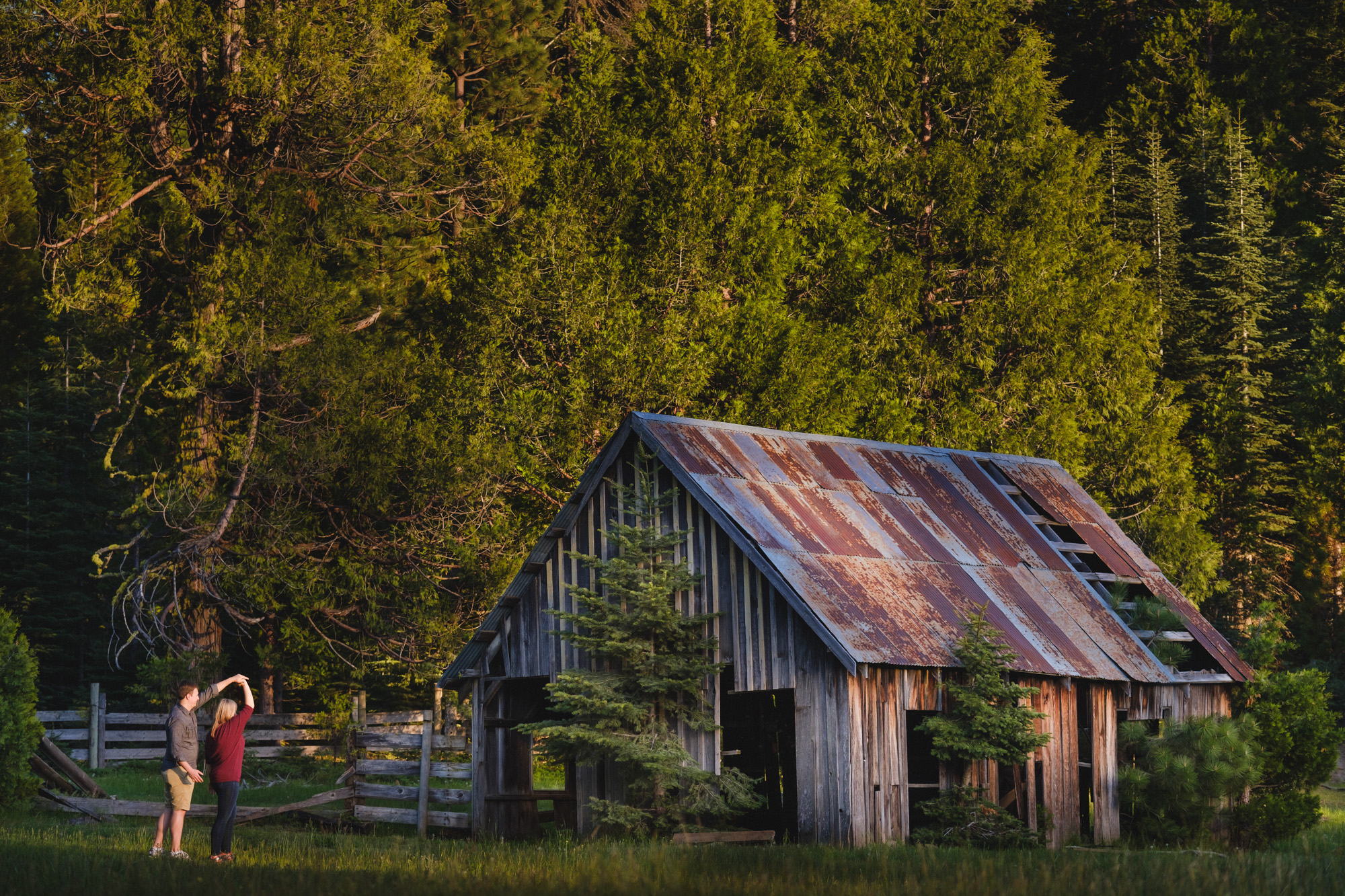 Meadow and barn engagement session